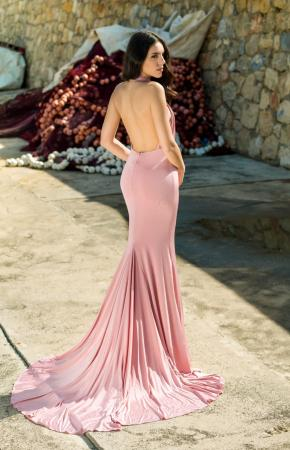 Stole the Show Pink Backless Gown